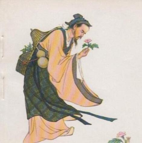华佗知道了黄蒿能治黄疸病,肯定了黄蒿的药用价值,并起名茵陈