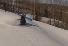 热爱生命,谨慎滑雪!