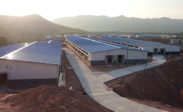 大型养猪场建设.png