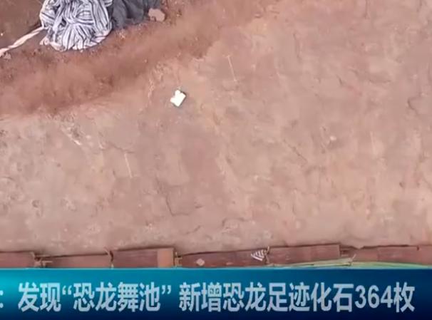 """福建發現""""恐龍舞池"""",福建為什麼總發現恐龍足跡,中國哪些地方被稱為恐龍之鄉"""
