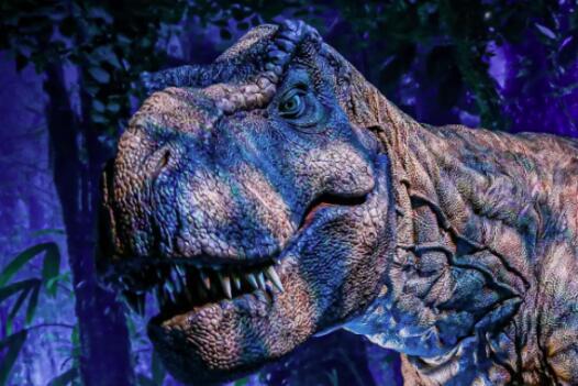 《侏罗纪世界》展览的第一次北美之旅,此次展览将带来怎样体验?