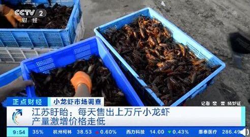 为什么小龙虾的价格每斤降了十几元?小龙虾的起源是什么?为什么小龙虾这么受欢迎