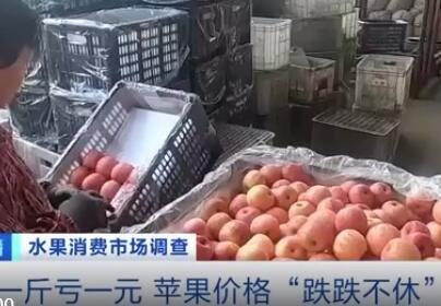 卖1斤亏1元 苹果价格大跌滞销是为什么,未来苹果价格会一直下跌吗,现在价格是多少