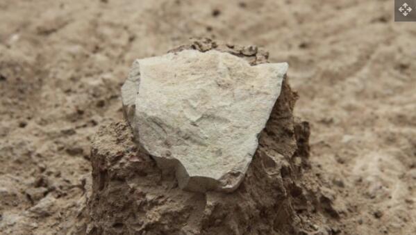 在肯尼亚图尔卡纳湖旁的 Lomekwi 3 发掘现场出土的石器.jpg