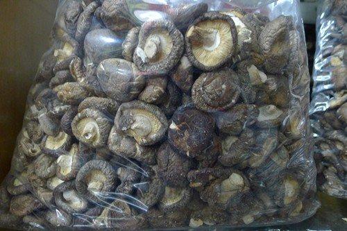 000061农 产 品香菇