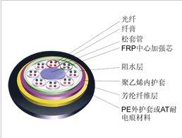 002309中利科技全介质自承式光缆