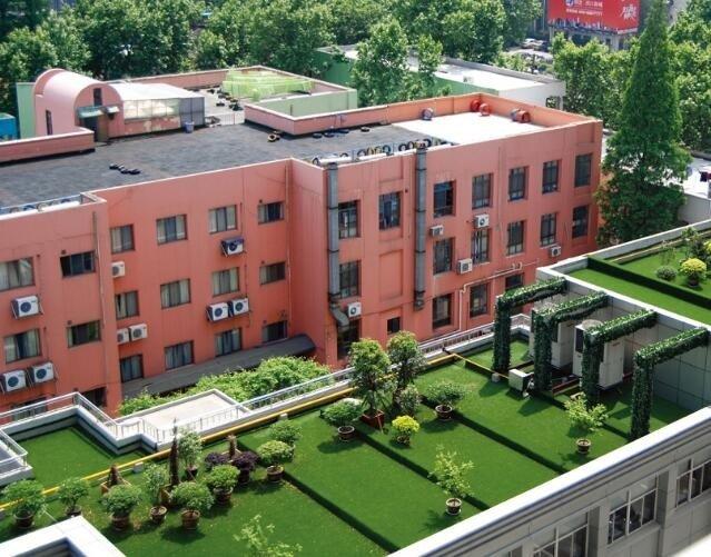 605099屋頂花園人造草坪