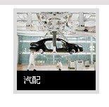 600352浙江龙盛汽配产业