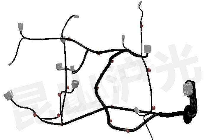605333前門線束