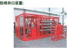 300164通源石油防喷井口装置