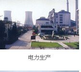 600508上海能源电力生产