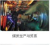 600508上海能源煤炭生产与贸易