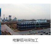 600508上海能源电解铝与深加工