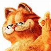 加菲猫就是我